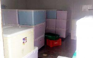 lig 300x188 - Alcobaça: Carga de lagosta avaliada em R$ 470 mil é apreendida em depósito - o tempo jornalismo