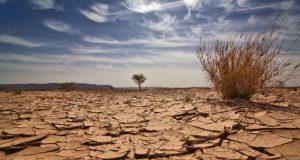 seca 300x160 - Na Bahia, quatro milhões são castigados pela seca - o tempo jornalismo