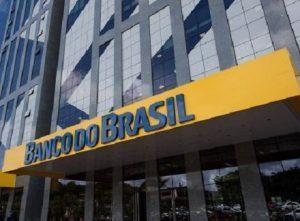 IMAGEM NOTICIA 5 2 1 1 300x221 - Banco do Brasil é avaliado como a instituição financeira mais sustentável do mundo - o tempo jornalismo