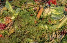 Por ano, brasileiro joga no lixo mais de 40 quilos de alimentos