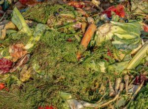 IMAGEM NOTICIA 5 1 8 300x221 - Por ano, brasileiro joga no lixo mais de 40 quilos de alimentos - o tempo jornalismo