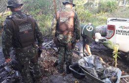 Operação apreende 5,5 toneladas de caranguejos na Bahia