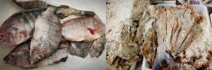 nnn 1 300x100 - Camacan: Aproveite a promoção de peixes do Super Sacolão - o tempo jornalismo