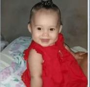 Bahia: Bebê de um ano morre após ser atacado por pit bull dentro de casa